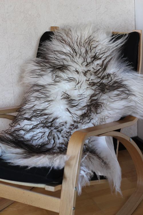 Isländska fårskinn